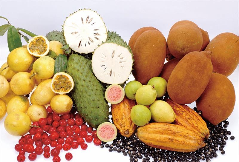 s_amazonfruits_150410