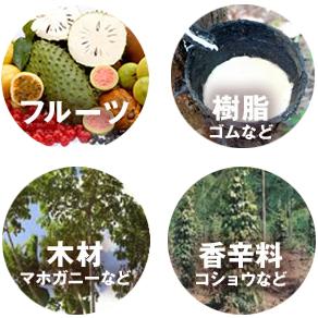 多様な食糧・資源の供給